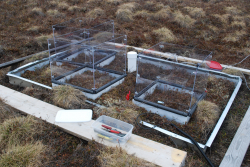 Experimental drying plots on the tundra