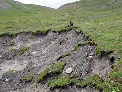 A thermokarst failure on the tundra