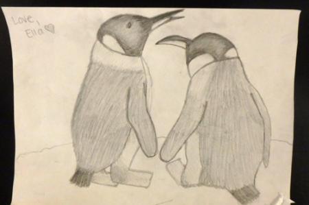 Penguins from Ella