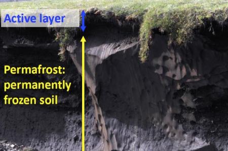 Permafrost Cross-Section