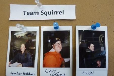 Team Squirrel