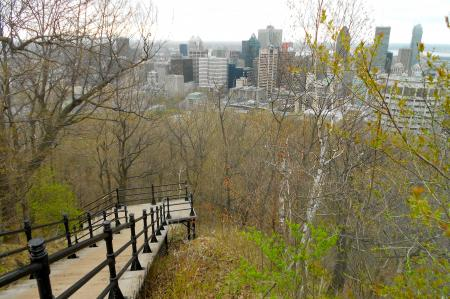 Stairs up Mount Royal