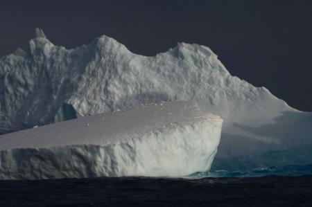 Penguin on an iceberg