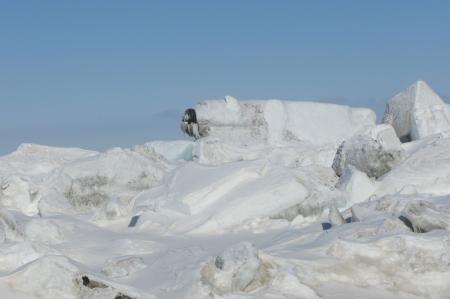 A polar bear sculpture on the ridges!