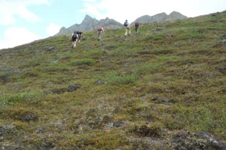 Climbing  the valley slope above Atigun River