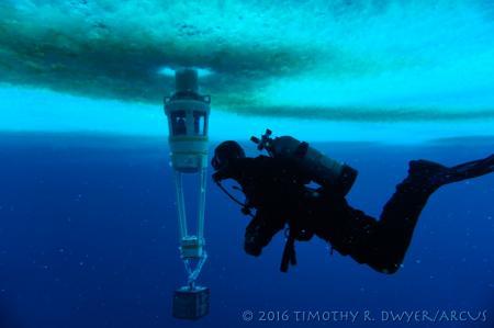 diver and observation tube