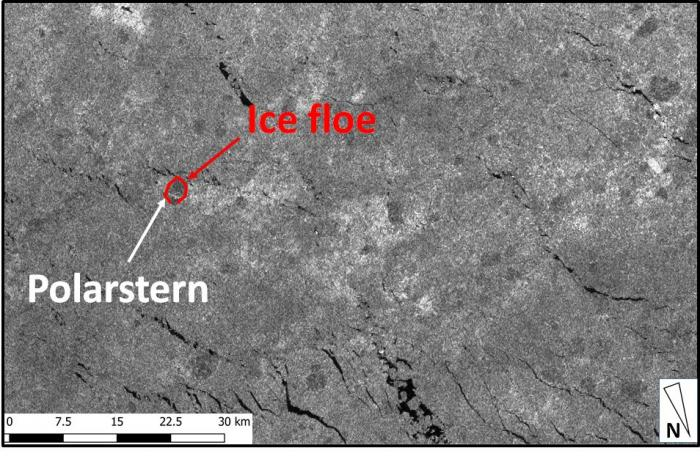 Polarstern at ice floe. Contains modified Copernicus Sentinel data (Photo: Christian Haas, Contains modifie; Courtesy of AWI 2019).