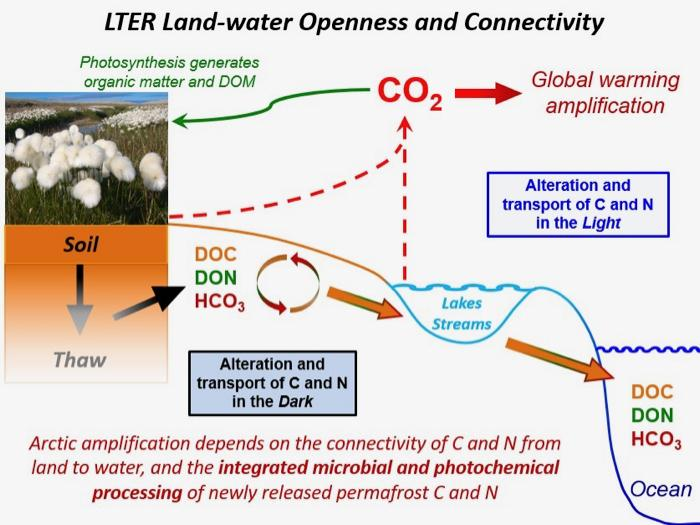 LTER Land-Water Openness and Connectivity