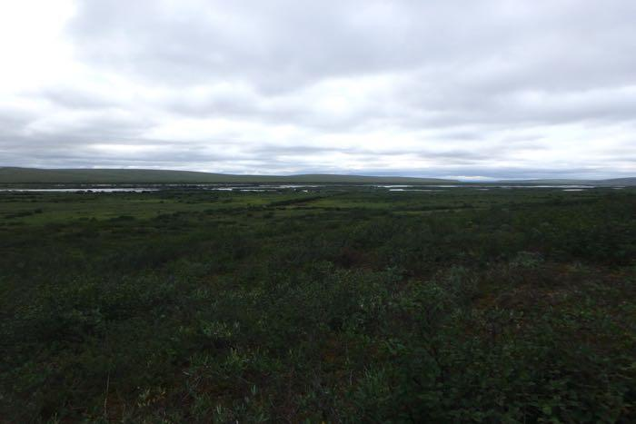 View from field site located about two hours outside of Toolik
