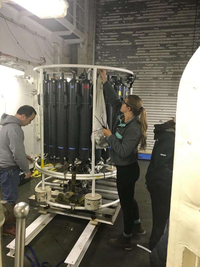 Eric Wisegraver (NOAA) and Caitlin Meadows, a PhD student, begin to collect water samples from the deep cast CTD.