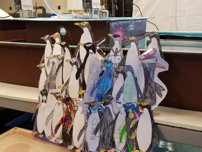 Ms. Spallino's penguins from CCDS in Chico, California
