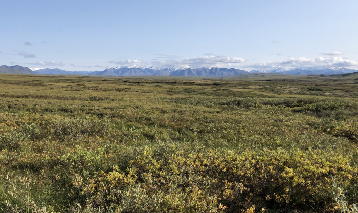 View of the tundra and the Brooks Range