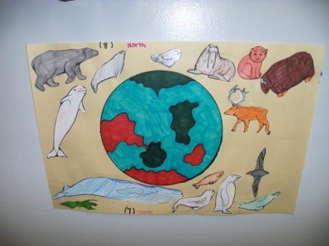 Globe Project