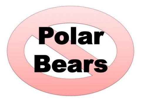 No polar bears