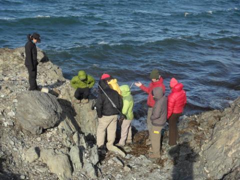 Field trip on the cliffs at Kapp Linne.