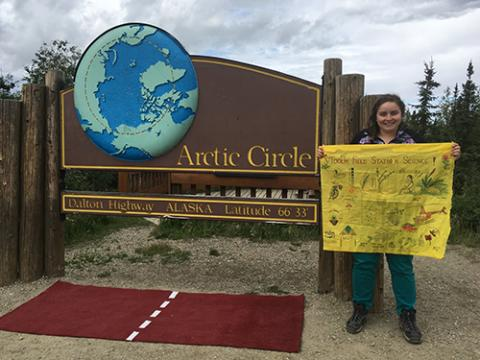 Art in front of Arctic Sign