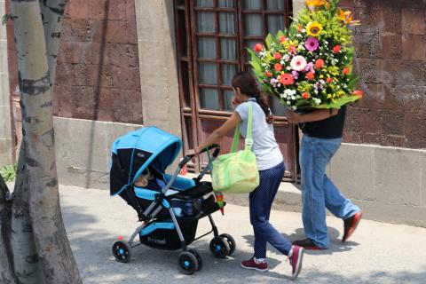 Flowers & Stroller
