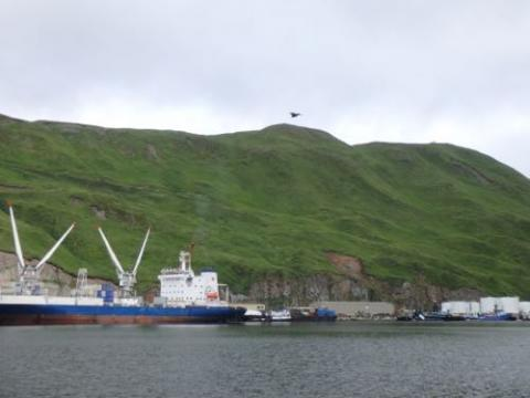 The view of Dutch Harbor from the ship