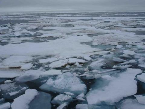 Ice over the Hanna Shoal.  August 2013.