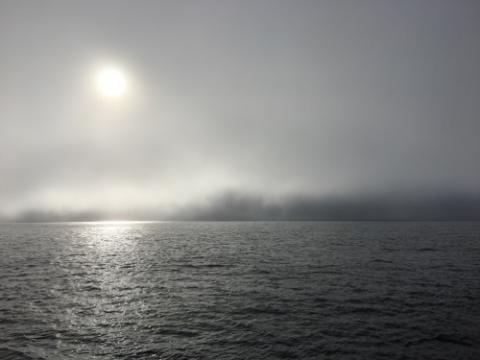 The sun gets low in the sky over calm seas as the fog rolls in! September 5, 2017.  Photo by Lisa Seff