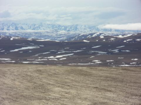 view from Dalton Highway just North of TFS in late May