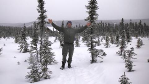 Field Cabin Trail