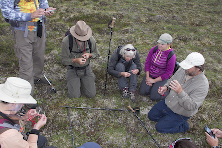 Carl Roland demonstrating plant plots. Denali National Park, 2016. Photo by Janet Warburton.