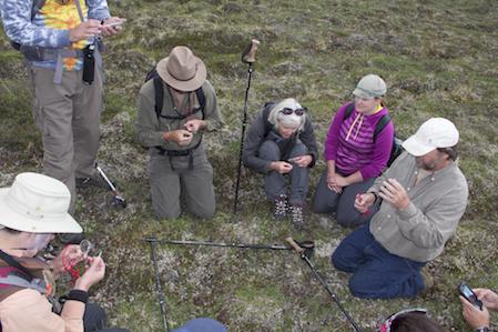Carl Roland demonstrating plant plots. Denali National Park, 2016. Photo by Janet Warburton.