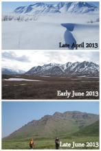 Tundra transformation