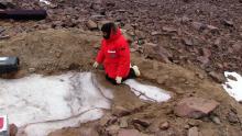 Jackie Hams examines buried ice.