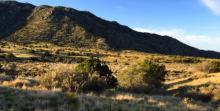 Sandia Foothills