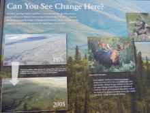 Interpretive board describing repeat photo pairs in Denali National Park