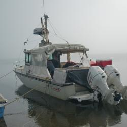 Our vessel, the Boston Whaler.