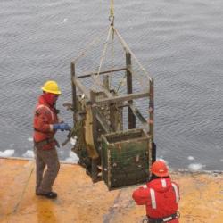 Whale bone lander
