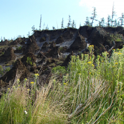 Thawing permafrost cliffs