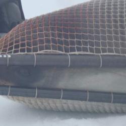 Ross Seal in A Net
