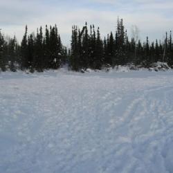 No More Pristine Snow
