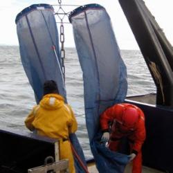 Zooplankton nets
