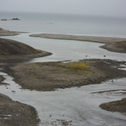 Where the river outlet from Lake Linne meets the ocean.