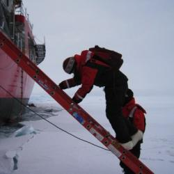 Using the ladder to get to the ice