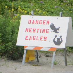 Eagle nesting sign in Unalaska