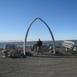 Whale Bone Arch