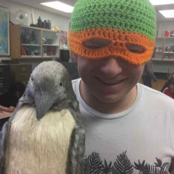 Beanie Contest competitor