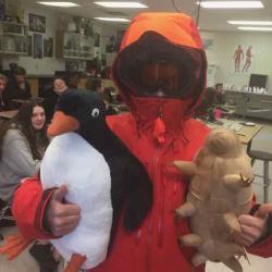 Happy Antarctica Day!