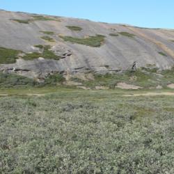Kangerlussauq landscape