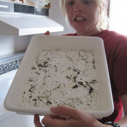 Rebecca uses the time to face the aftermath of scientific research: cleaning