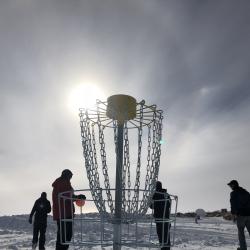 Disc golf sun dog