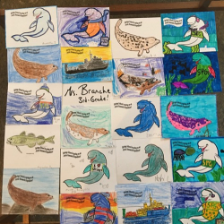 Arctic organism artwork from Springs School students! 3rd Grade 2016/17 Mrs. Branche's classroom.  Photo by Lisa Seff.  August 2017.