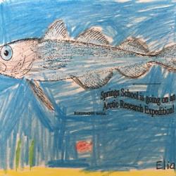 Arctic artwork by Elias W!  Photo by Springs School PolarTREC educator Lisa Seff.