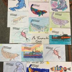 Arctic Artwork!